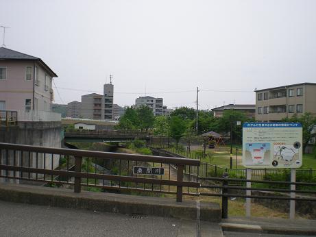 花田橋から中瀬橋、この橋が絶好の観賞地です。