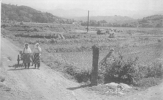 昭和30年代初頭の「岡の道しるべ」
