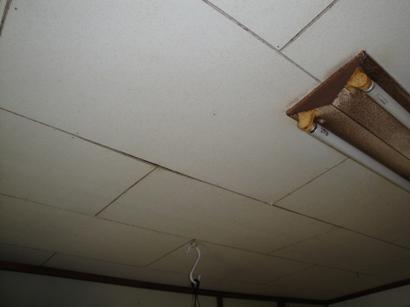 天井落ちそう