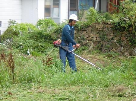 草刈りの時期